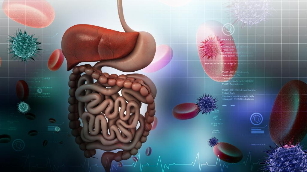 intestino Sobre a Van