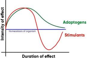 adaptog-diag-300x199 Estresse: Estimulantes ou Adaptógenos?