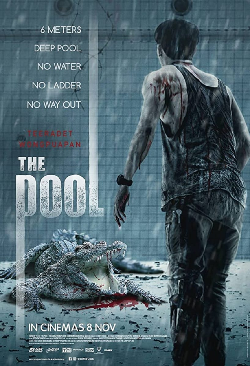 The Pool Traps A Man In A Pool With A Crocodile - Mother of Movies