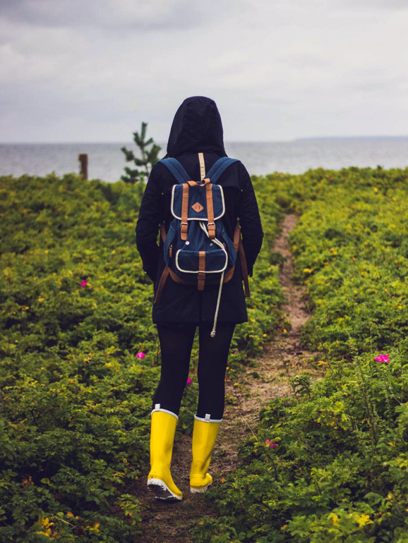 Wear a backpack so you can forage while you walk.