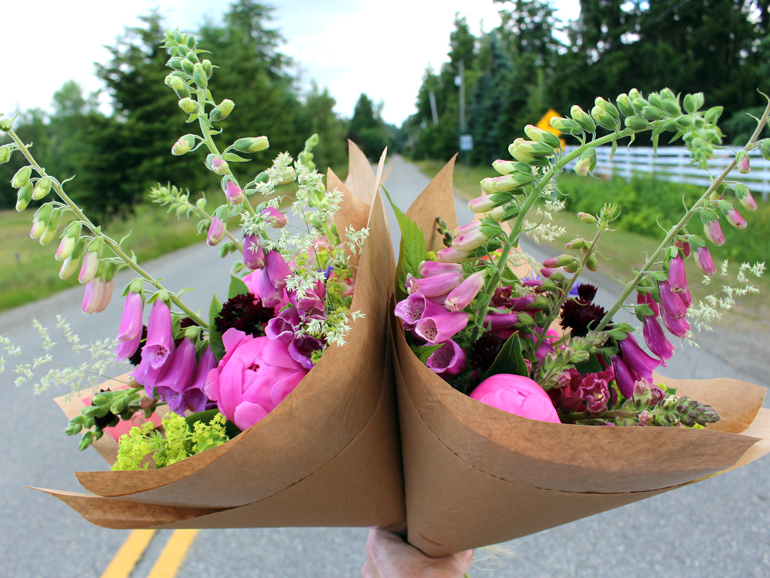 how to extend the vase life of your flowers