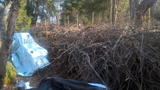 woodland-garden-sticks_33769036490_o