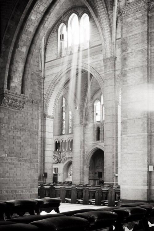 Niels Polak, Licht en atmosfeer in de nieuwe Bavo te Haarlem (2014)