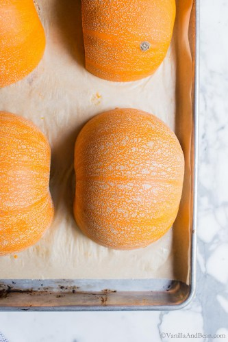 Roas Pumpkin