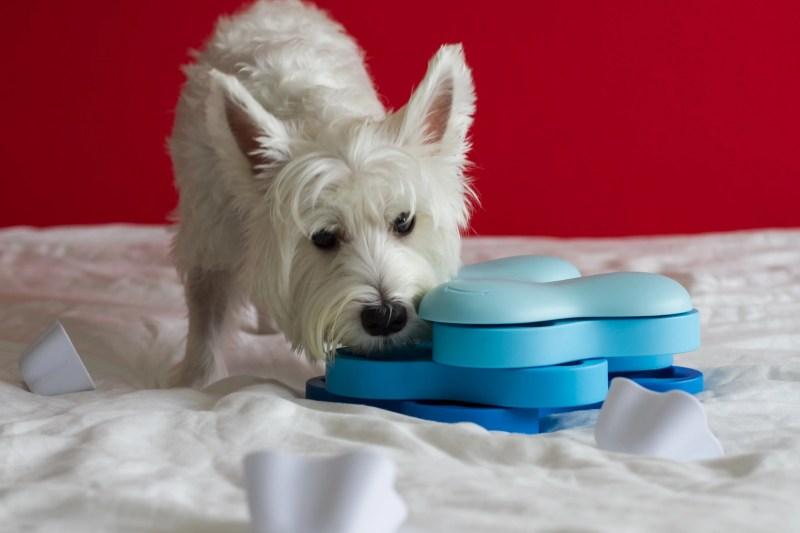 Nina Ottosson Dog Tornado IQ Toy   Vanillapup Picks