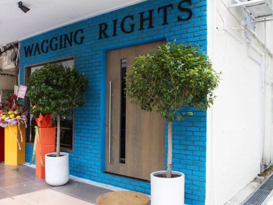 Wagging Rights Shopfront | Vanillapup