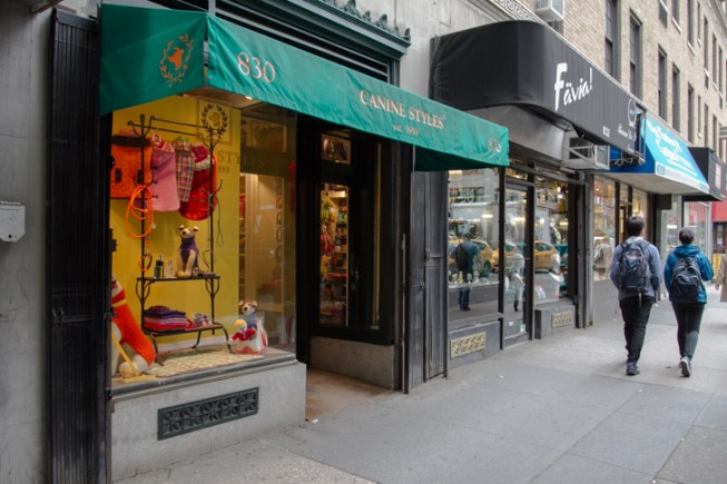New York Pet Boutique Canine Styles Store | Vanillapup