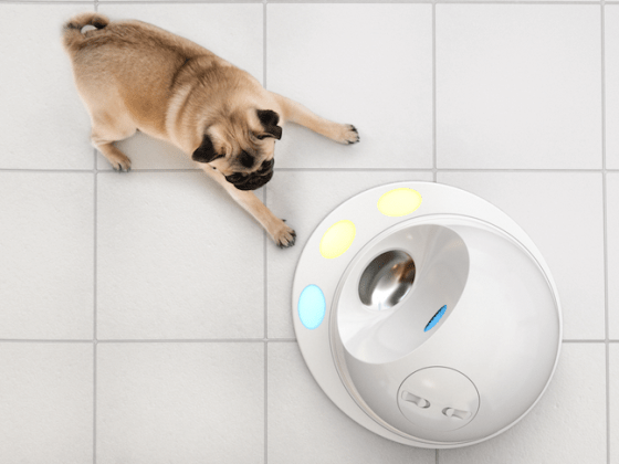 CleverPet Hub Game Console for Dogs | Vanillapup