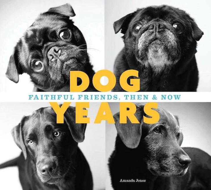 Dog Years Book   Vanillapup