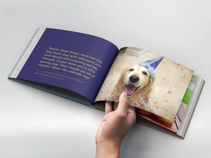 That Golden Dog Book   Vanillapup