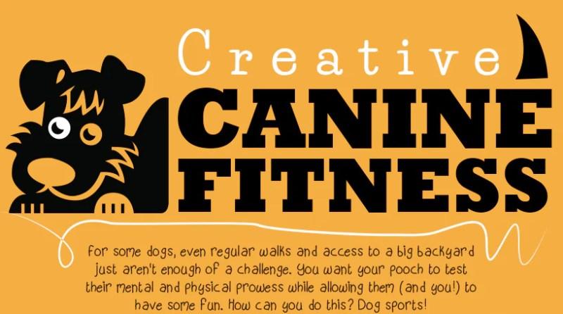 Creative Dog Sports   Vanillapup
