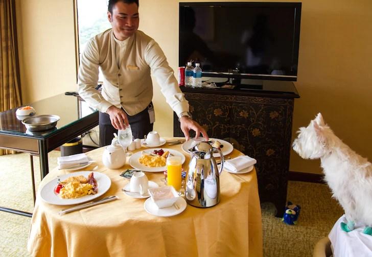 Pet-friendly Regent Singapore Hotel Staycation Room Service | Vanillapup