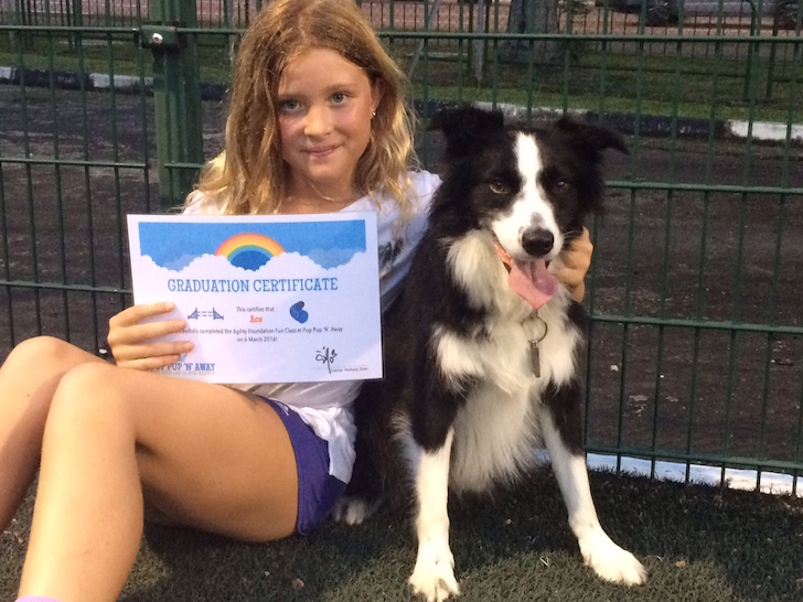 Ace graduated from agility class | Vanillapup