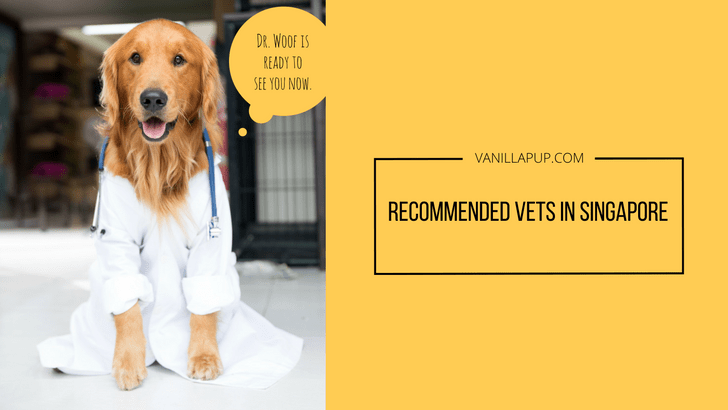 List of Recommended Singapore Vets