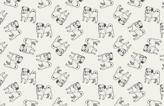 Murals Wallpaper Pug-themed Wallpaper | Vanillapup