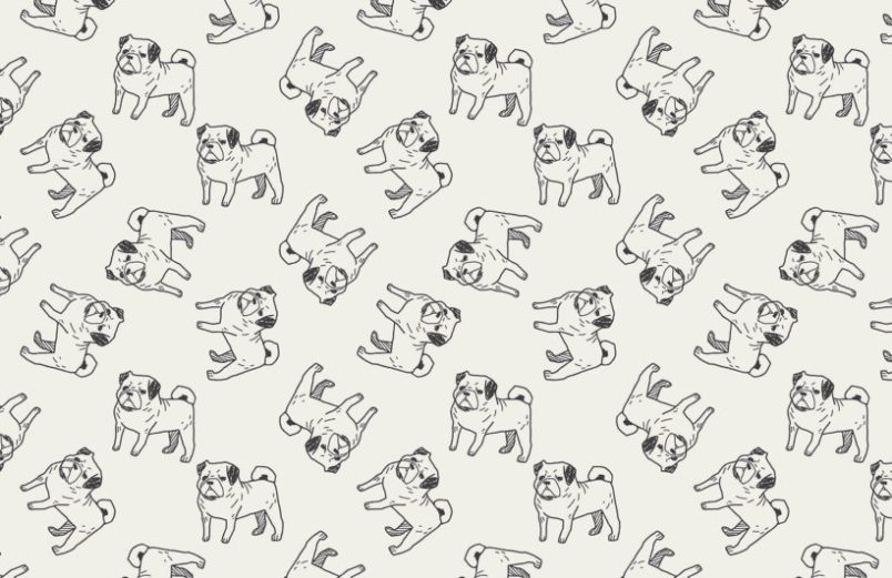 Murals Wallpaper Pug-themed Wallpaper | Vanillapup