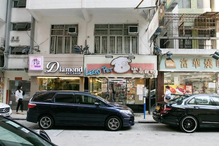 Victory Avenue Hong Kong Pet Shops | Vanillapup