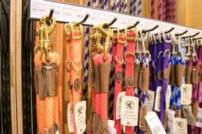 Whiskers and Paws Pet Leashes   Vanillapup