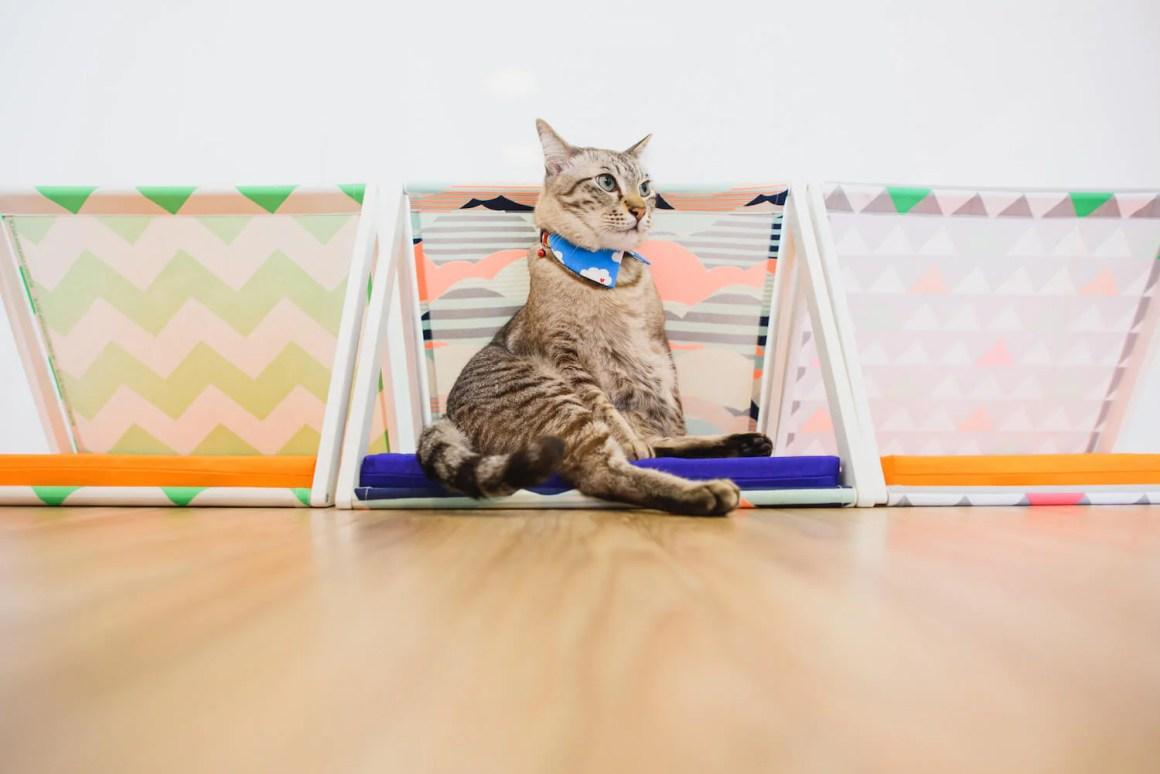 GOOOD 2-Way Cat Tent | Vanillapup