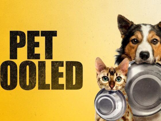 Pet Fooled Documentary   Vanillapup