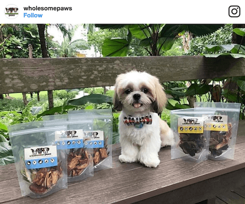 Wholesome Paws | Vanillapup