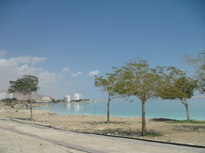 The Dead Sea hotels