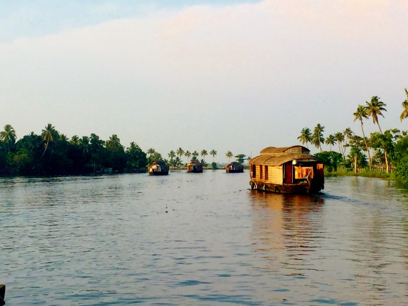 houseboats in the backwaters in kerala