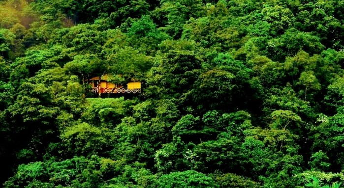 tree house resort - Vythiri Resort Wayanad