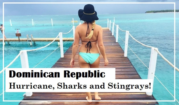 Punta Cana: Hurricane, Sharks and Stingrays - Reef Explorer