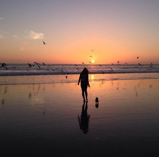 see Monterey - vanilla sky dreaming
