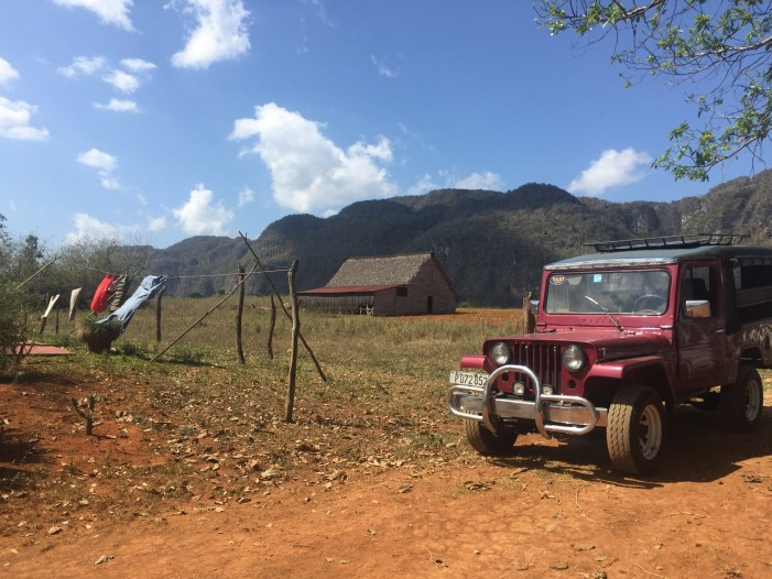 Viñales Horseback Riding & Cuban Tobacco Farms