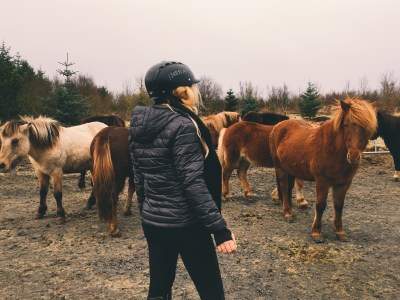 Horseback Riding With Icelandic Horses In Iceland