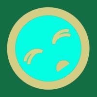 sfaguy