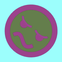 pilotgreen13