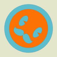 carovioleta