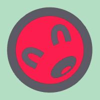 shawnspring