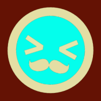 vstrom1