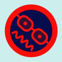 jeepinchica