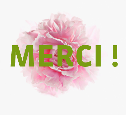 Newsletter merci