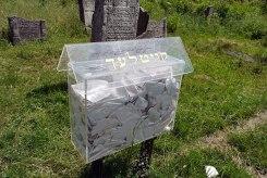 Belz - Jewish Cemetery
