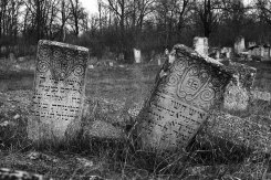 Orhei Jewish cemetery