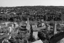 Rîbniţa Jewish cemetery