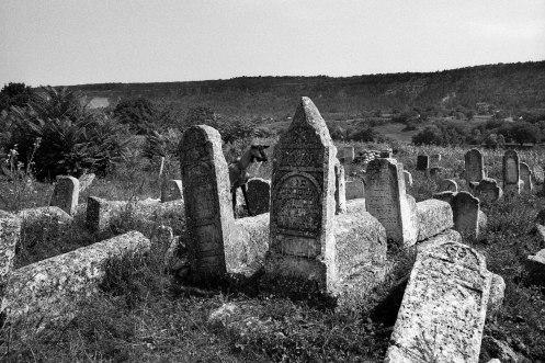 Vadul-Raşcov Jewish cemetery