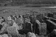 Jewish cemetery, Vadul-Raşcov (Vadul-Rashkov), Bessarabia, Moldova, 2016