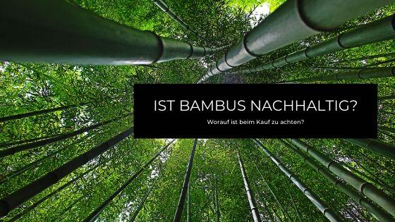 Ist Bambus nachhaltig?
