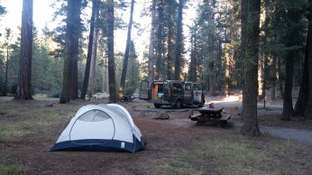 Camping in Lassen National Forest just outside the park entrance. FAITH MECKLEY