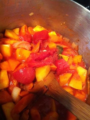 Orange Stew of squash