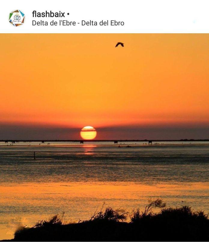 Foto de un atardecer en el delta del ebro
