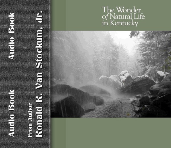 Kentucky mountain rain