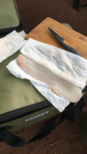 Zanderfilet frisch zubereitet am Salagou